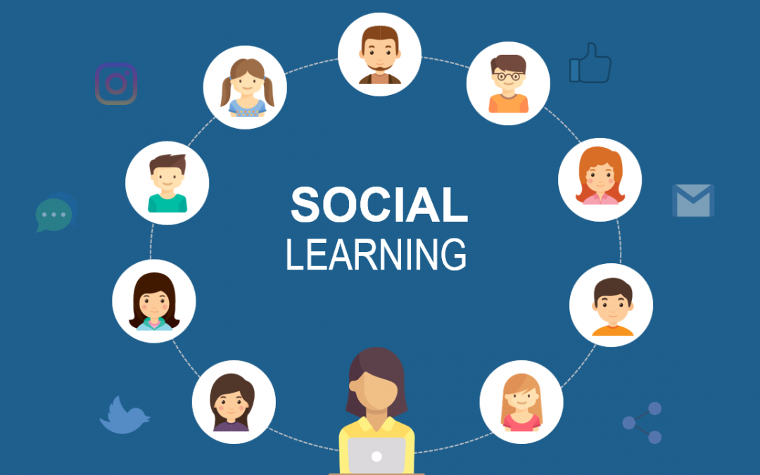 The problem with social learning is in the word